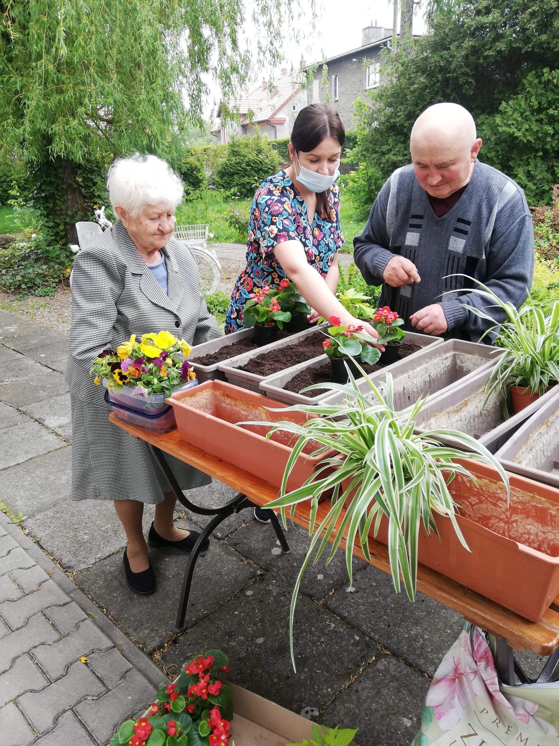 praqce ogrodnicze